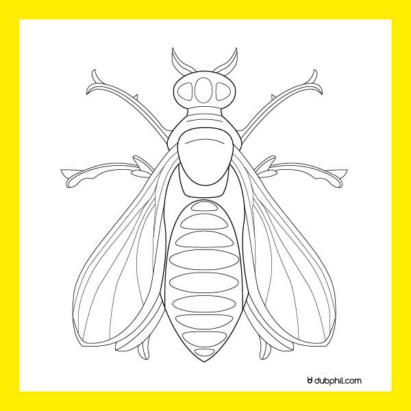 Empire, l'abeille un des emblèmes