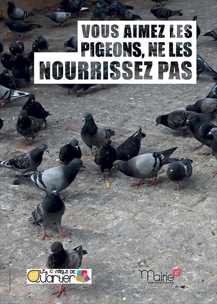 Vous aimez les pigeons , ne les nourrissez pas